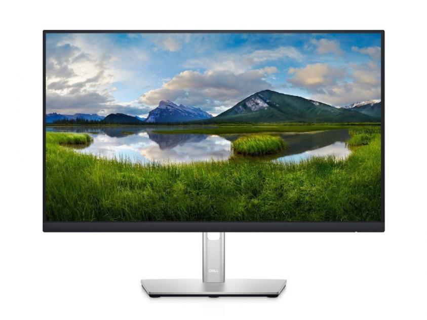 Monitor Dell P2422H 23.8-inch (210-AZYX)
